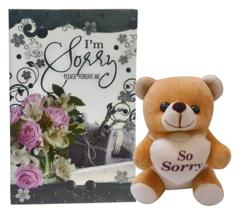 Amazon India Offer : Natali Sorry-Teddy And Greeting Card Gift Combo at Rs.312