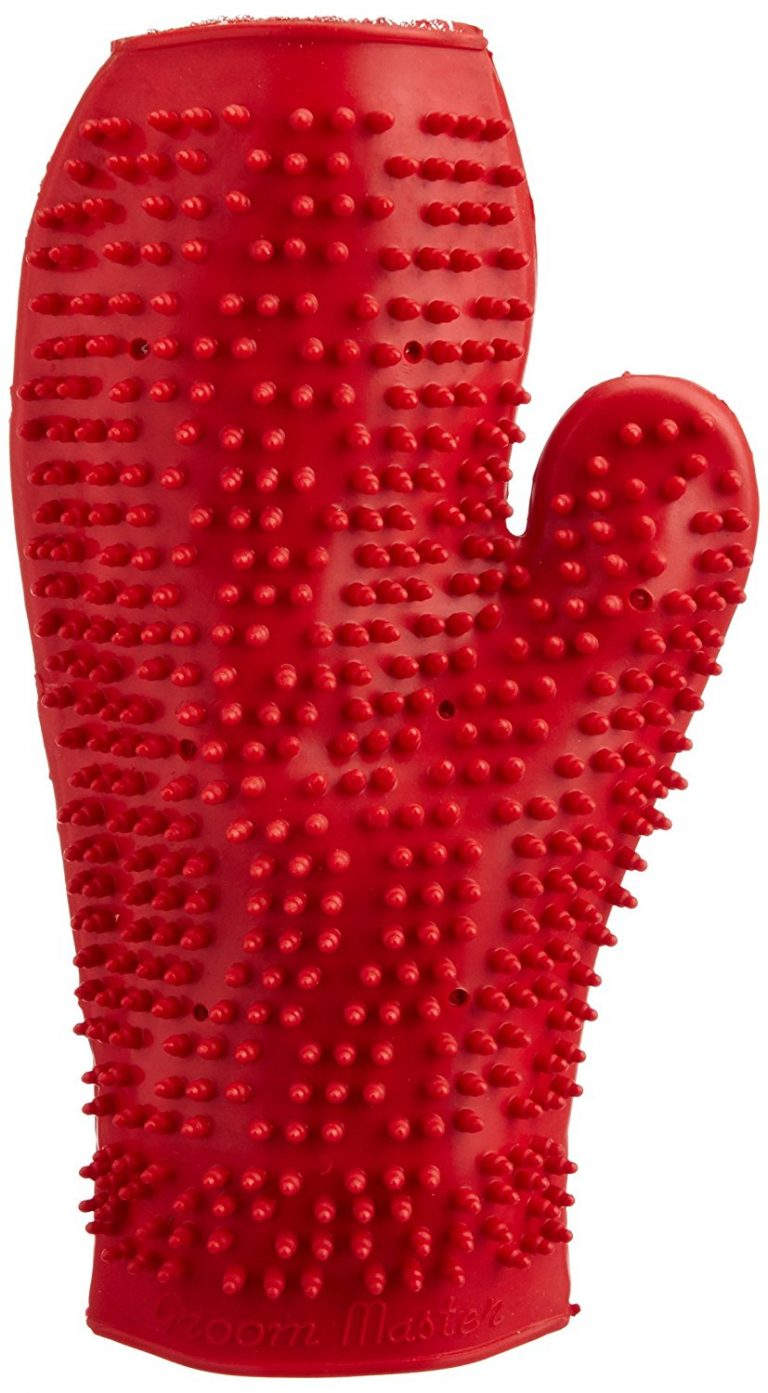 Amazon India : Choostix Dog Bath Glove, colour may vary (1 Piece) at Rs.144