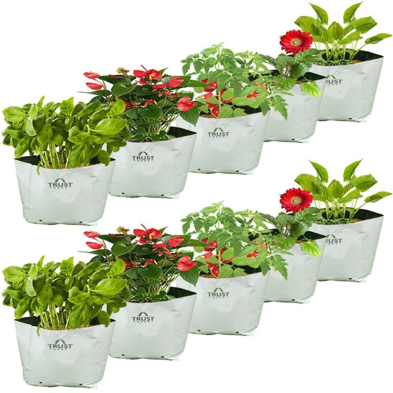 Amazon India : Trust Basket Poly Grow Bags UV Stabilized -10 Qty at Rs.265