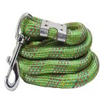 Amazon India : Pawzone Strong Rope Leash for Big Dogs with Big Hook at Rs.152