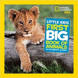 Amazon India : Little Kids First Big Book of Animals(National Geographic Little Kids First Big Books) Hardcover – 29 Sep 2010