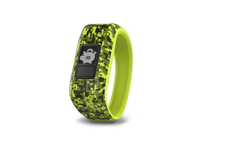 Amazon India : Garmin Activity Tracker