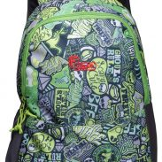 Amazon India : F Gear Saviour P2 26 Ltrs Green Casual Backpack (2417)