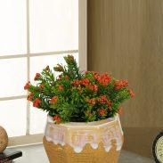 Myntra : 70% Off on Flower Vases