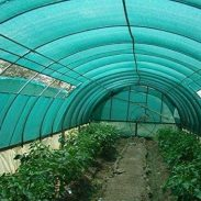 Amazon India : Unique Plastic Agro Shade Net with Gripping Clip (Green)