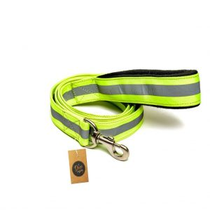 Amazon India : The Pets Company Reflective Nylon Leash with Collar Set for Puppy and Small Dogs, Green