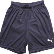 Flipkart : Puma Short For Boys & Girls Sports Solid Polycotton (Blue, Pack of 1)